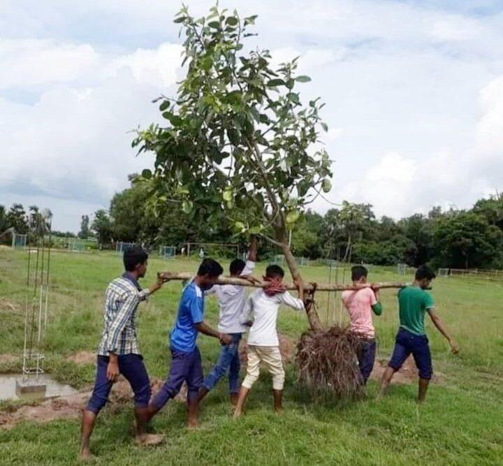 jharkhand green warriors