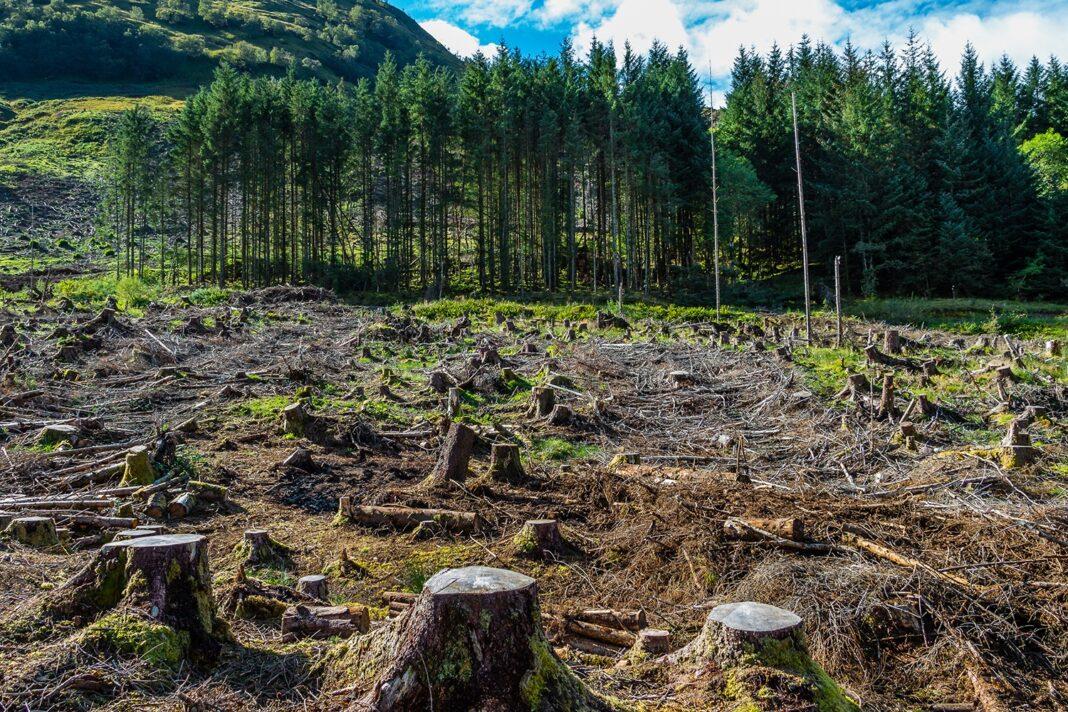 nature exploitation