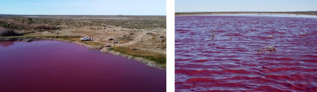 Argentina Lake Pollution