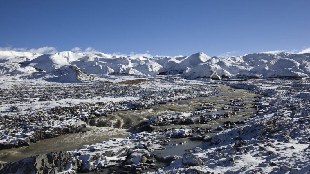 tibetan glacier viruses