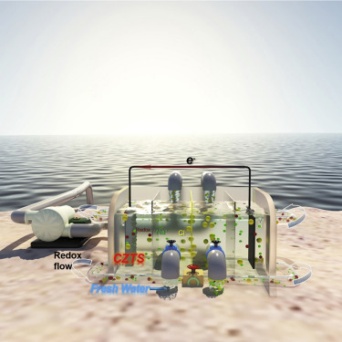 Hydrogen From The Sea