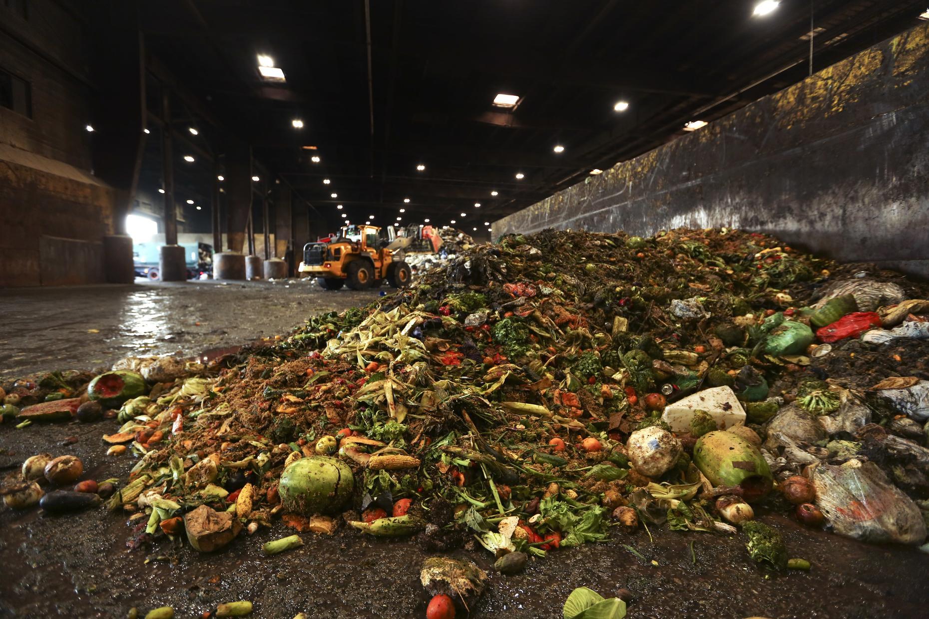 China Food waste law