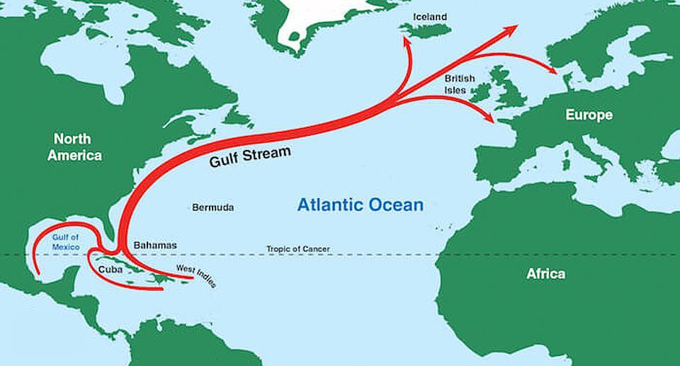 Gulf Stream Collapse