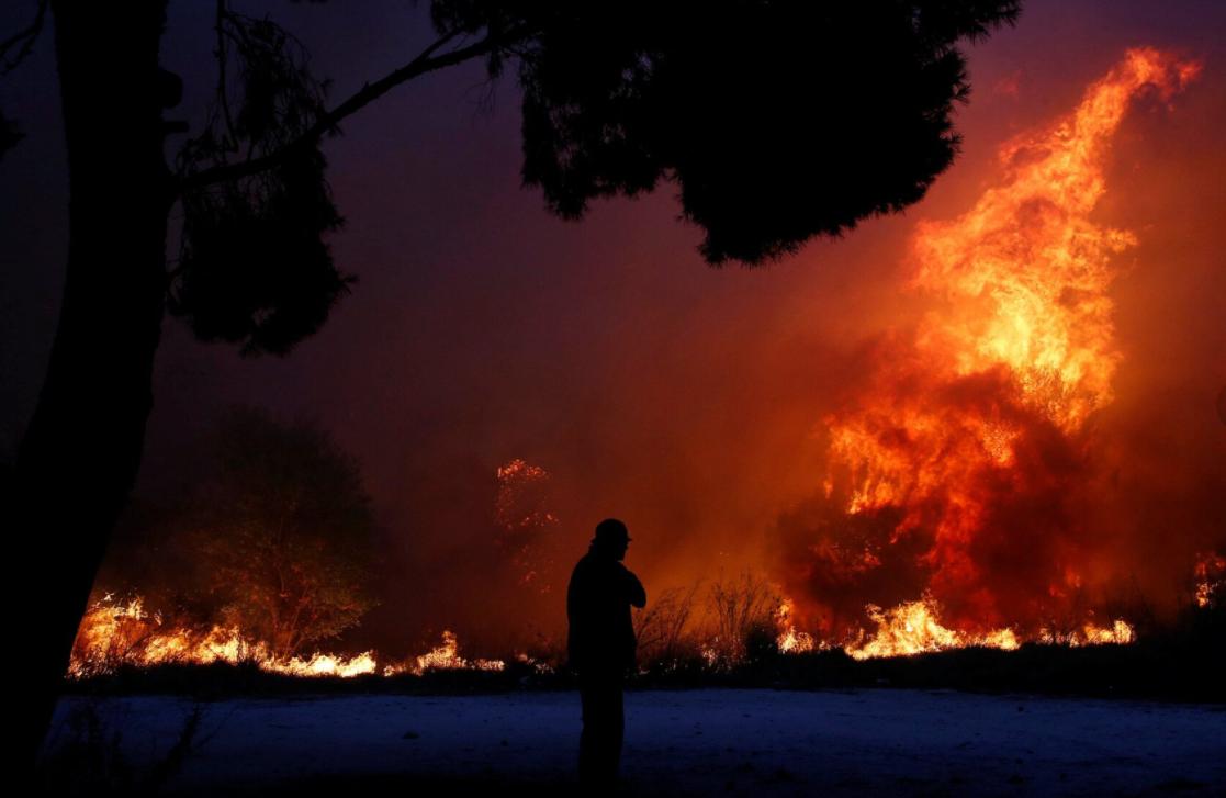 Mediterranean Wildfires