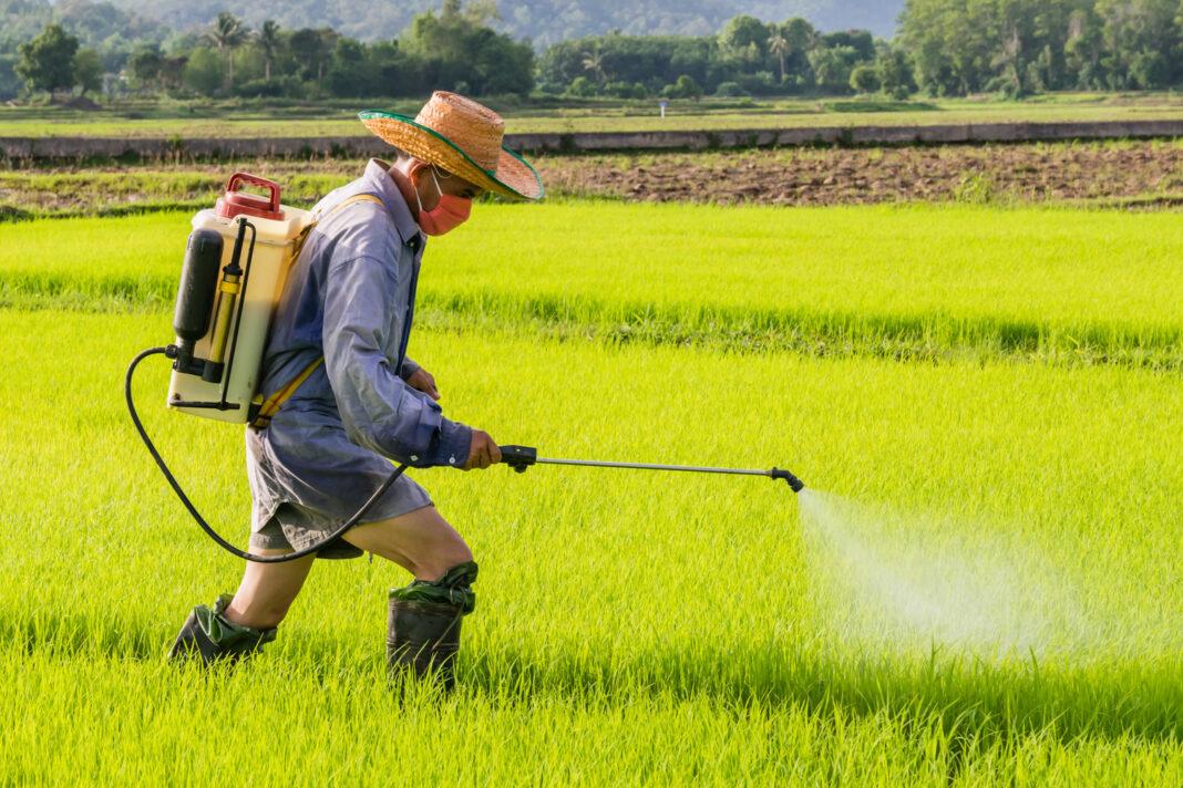 Eco-Friendly Pesticide