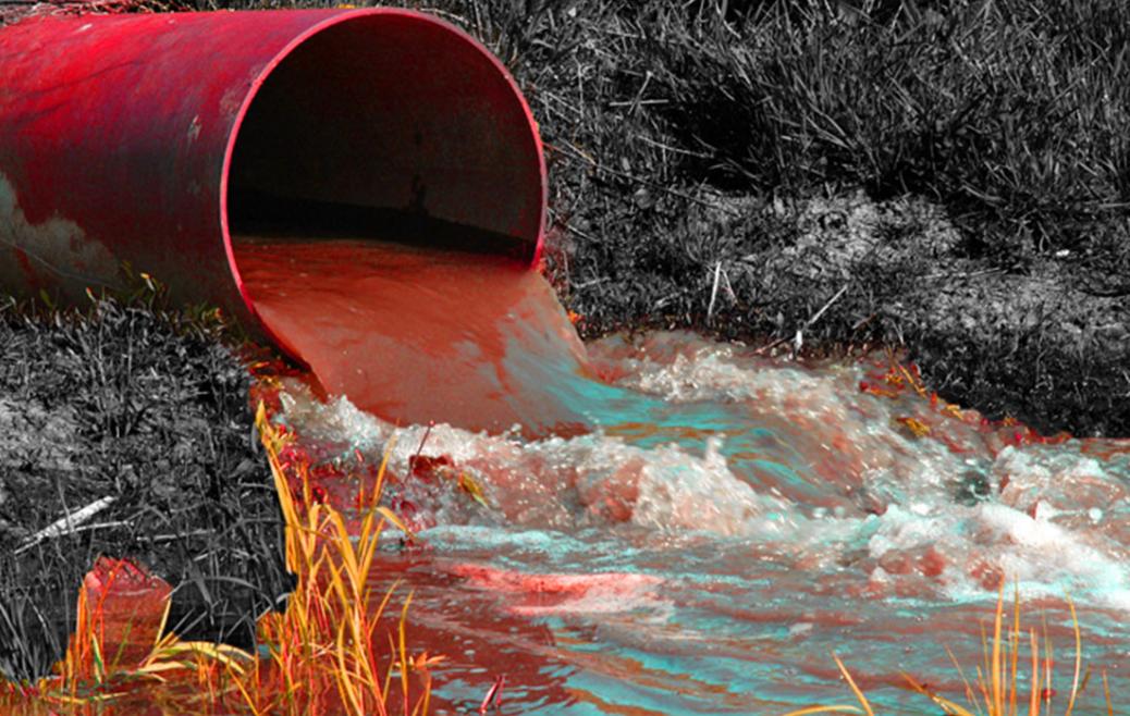 Persistent Organic Pollutants